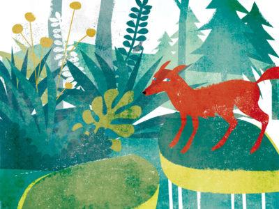 Marzo en el bosque encantado…